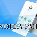 SBMI MINTA KEMNAKER UPDATE DATA P3MI DI APLIKASI JENDELA PMI